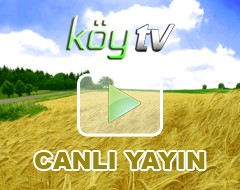 Köy-TV-(Turkey)